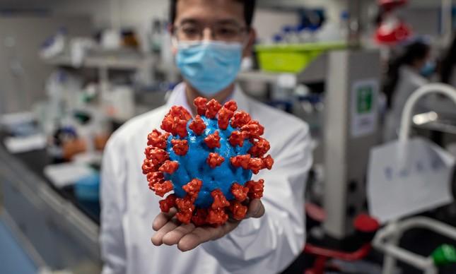 Coronavírus afeta não apenas os órgãos que fazem parte do sistema respiratório, mas também vários outros órgãos do corpo