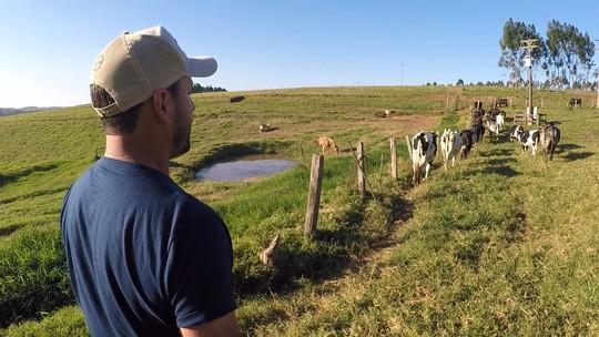 Dia do Agricultor: Nosso Campo faz homenagem a quem vive do que a terra produz