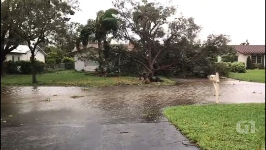 'Pior já passou', diz brasileira após passagem do furacão Irma por Miami