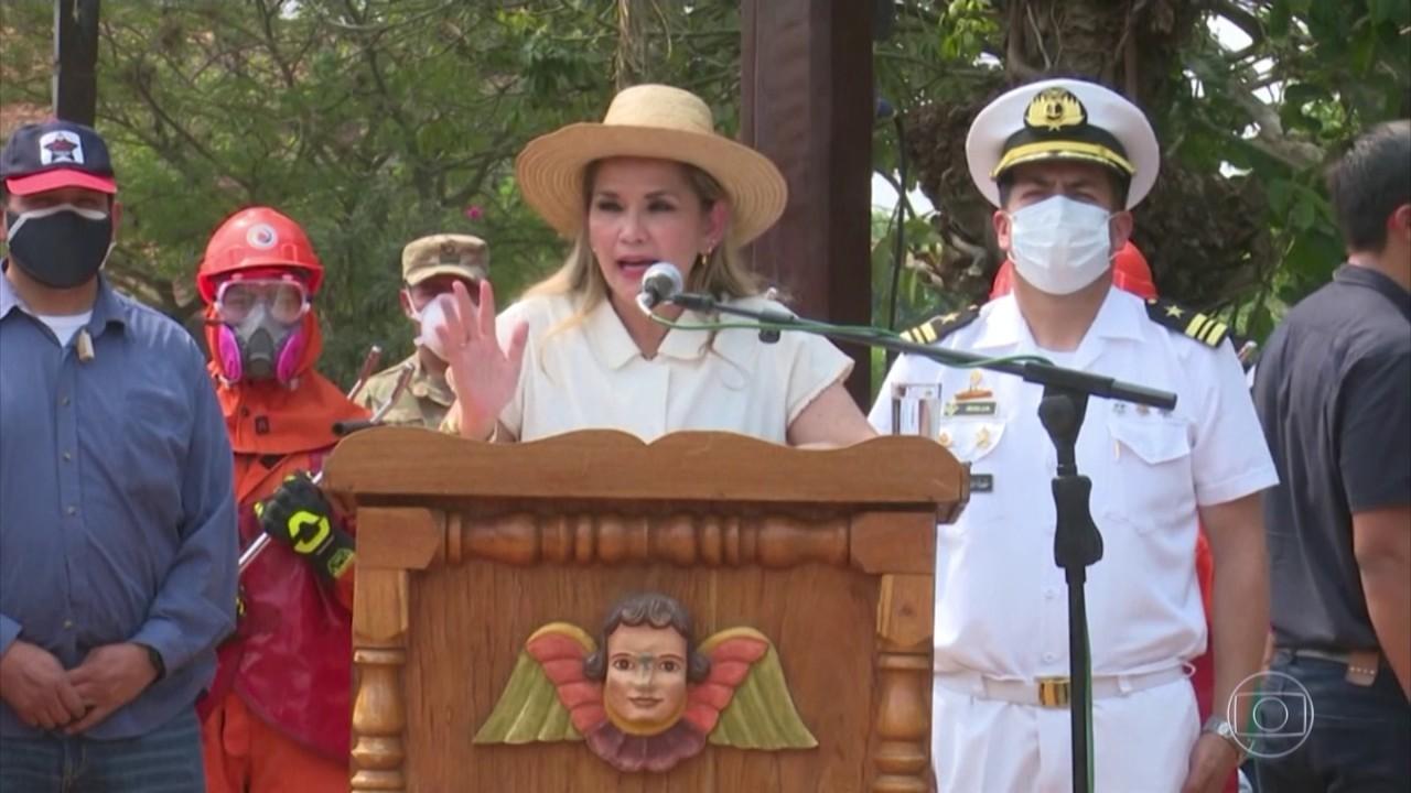 Presidente interina da Bolívia decreta emergência nacional por incêndios no pantanal