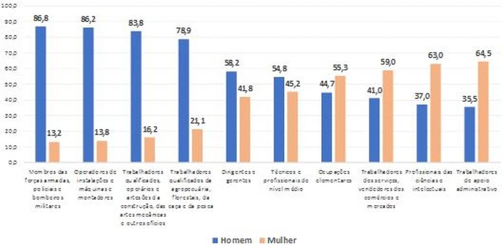 Distribuição percentual (%) da população de 25 a 49 anos de idade ocupada na semana de referência, por grupamentos ocupacionais do trabalho principal, segundo o sexo no 4º trimestre de 2018 — Foto: IBGE/Divulgação
