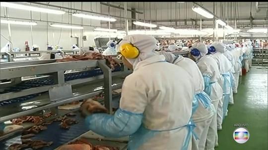 União Europeia proíbe exportação de frango de 20 frigoríficos do Brasil