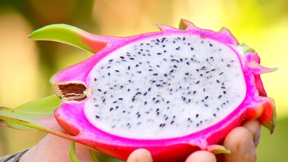 Pitaya é rica em vitaminas C, D, complexo B e minerais e tem várias propriedades — Foto: Reprodução/TV TEM