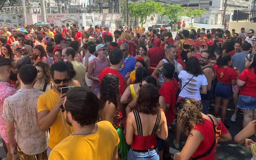 Foliões se reuniram no Recife para o bloco 'Eu me vingo de tu no carnaval' — Foto: Pedro Alves/G1