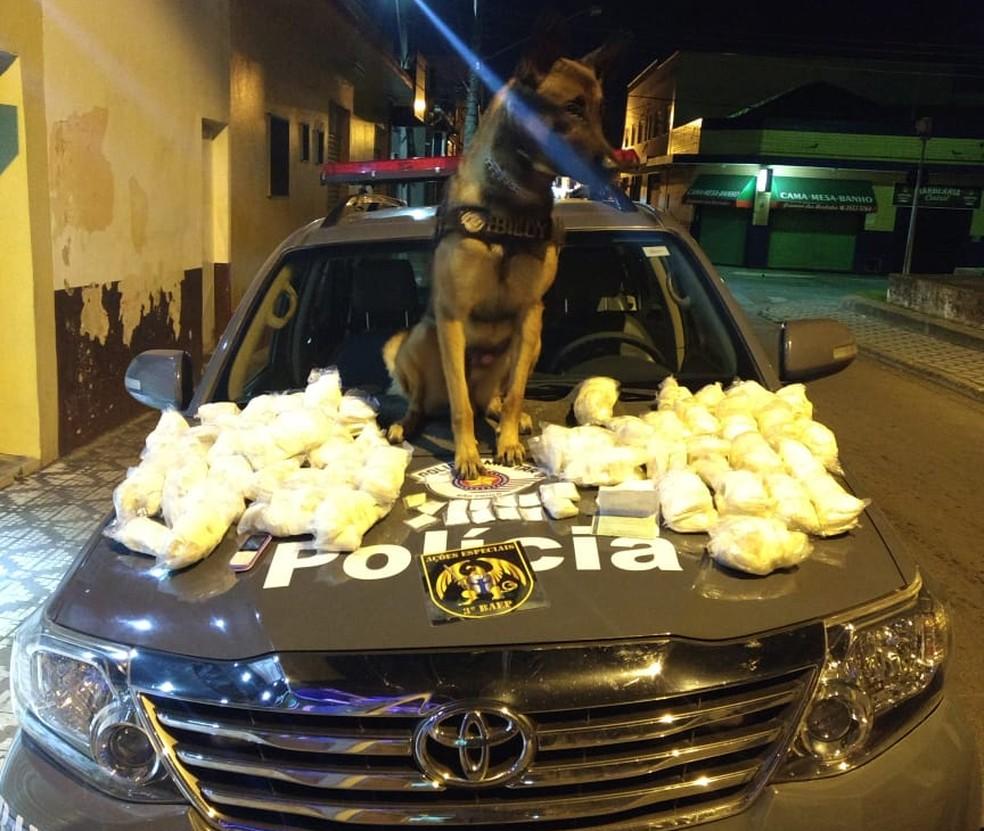 Ocorrência aconteceu na noite desta terça-feira (19), na rodovia dos Tamoios, na altura de Jambeiro (SP) (Foto: Divulgação/ Baep)