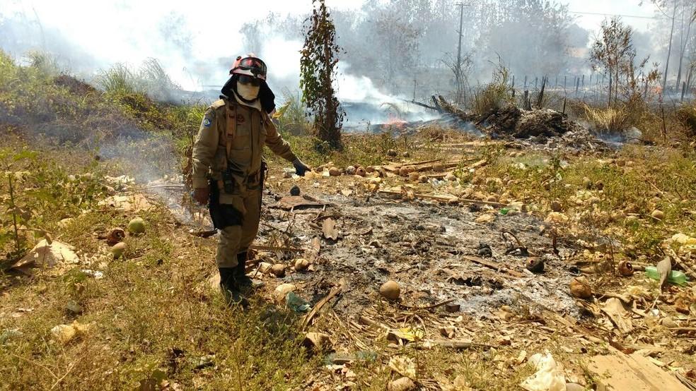 260 bombeiros e 50 civis compõem as brigadas mistas que combatem os incêndios no estado (Foto: Sema)