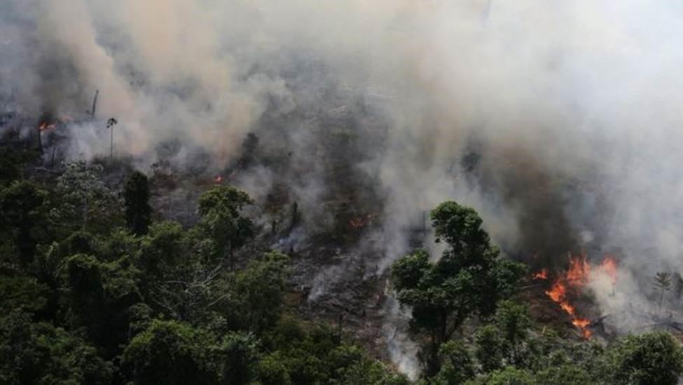 Governador do AP diz que governo federal precisa ter provas sobre ONGs estarem envolvidas em queimadas - Notícias - Plantão Diário