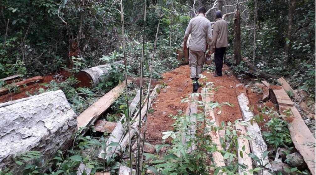 Operação Lavra Ilegal, realizada nas Terras Indígenas Sararé e Paukalirajausu — Foto: Funai/Assessoria