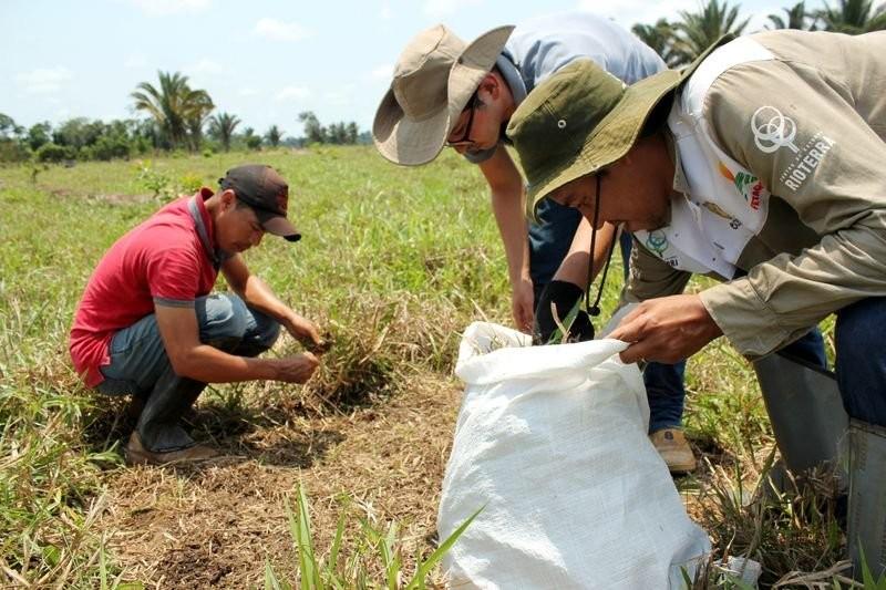 Reuters Amazônia Rondônia (Foto: Reuters)