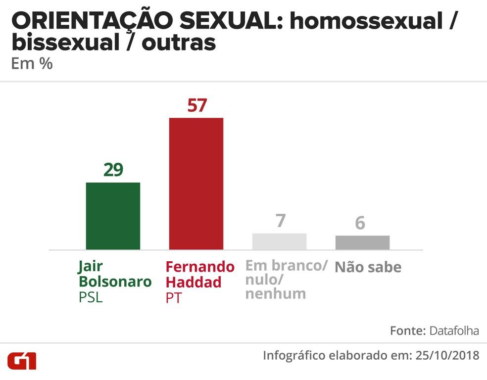 Pesquisa Datafolha - 25 de outubro - intenção de voto por segmentos - orientação sexual: homossexual / bissexual / outras — Foto: Arte/G1