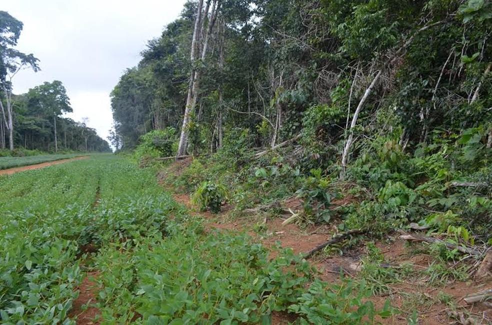 Dagoberto foi encontrado morto na zona rural de Vilhena — Foto: Lauane Sena/G1