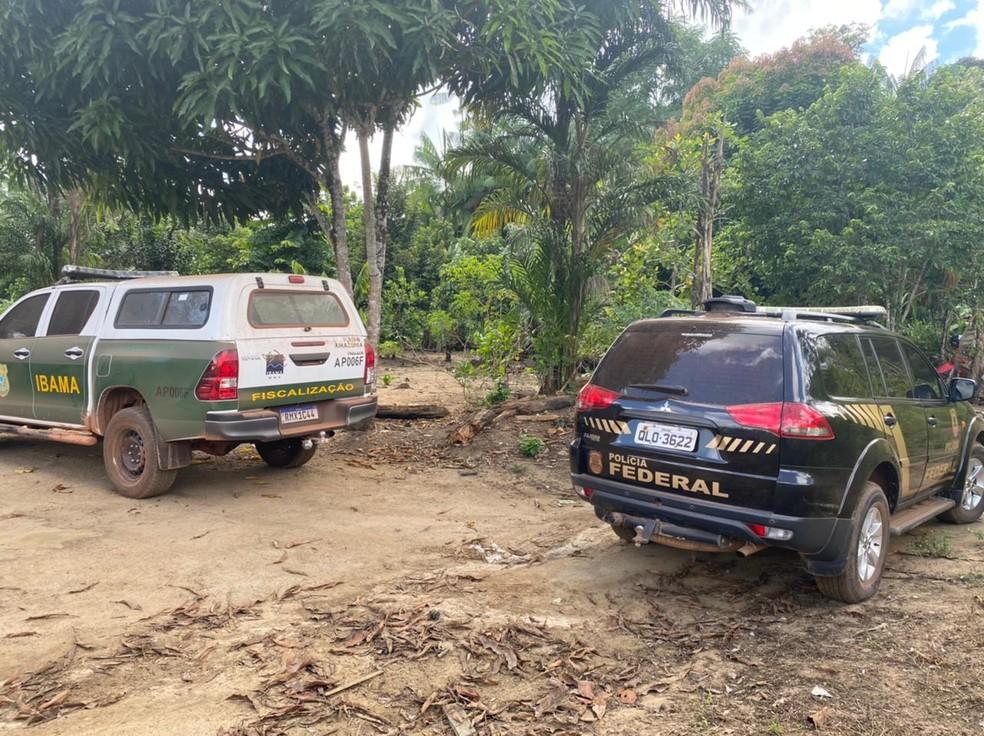 Operação Anhangá - Ação foi coordenada com apoio do Ibama — Foto: Polícia Federal/Divulgação