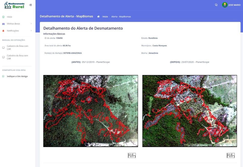 Alerta de desmatamento dentro de uma propriedade rural em Rondônia — Foto: Reprodução/Monitoramento Rural