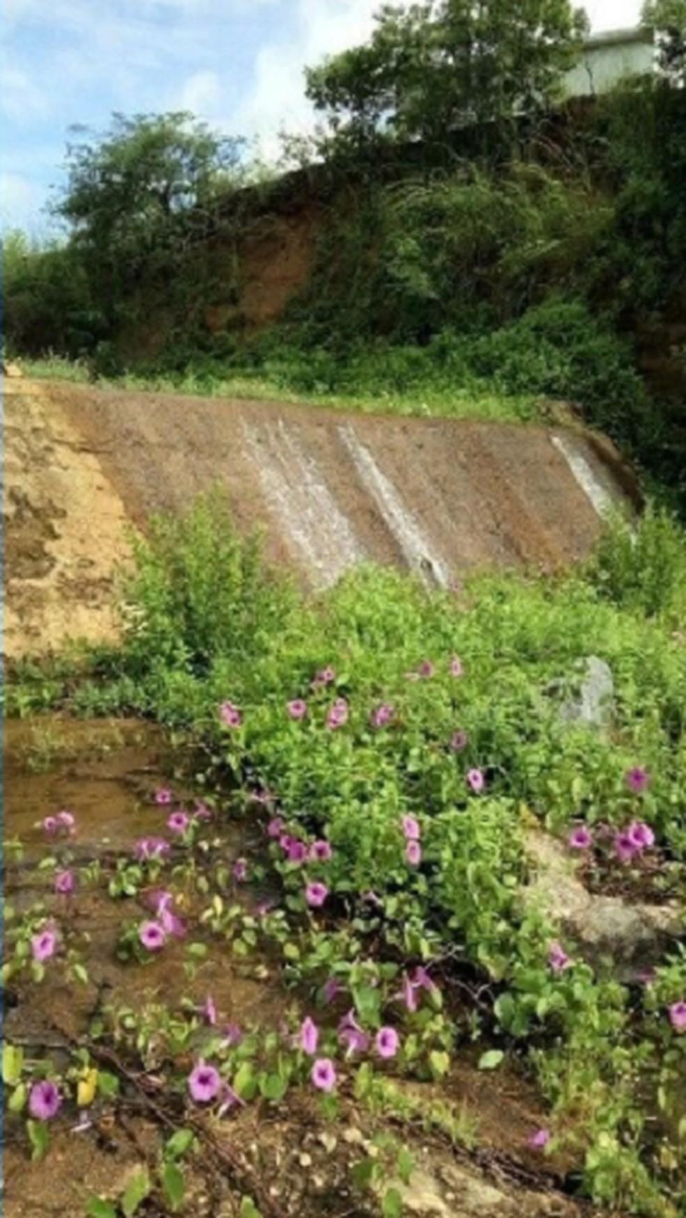 Açude Valério, no município de Altaneira. — Foto: Reprodução/TV Verdes Mares