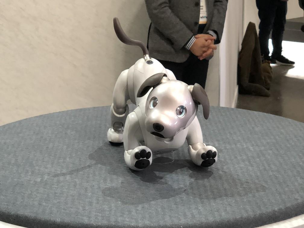 Aibo, o cão robô da Sony. (Foto: Helton Simões Gomes/G1)