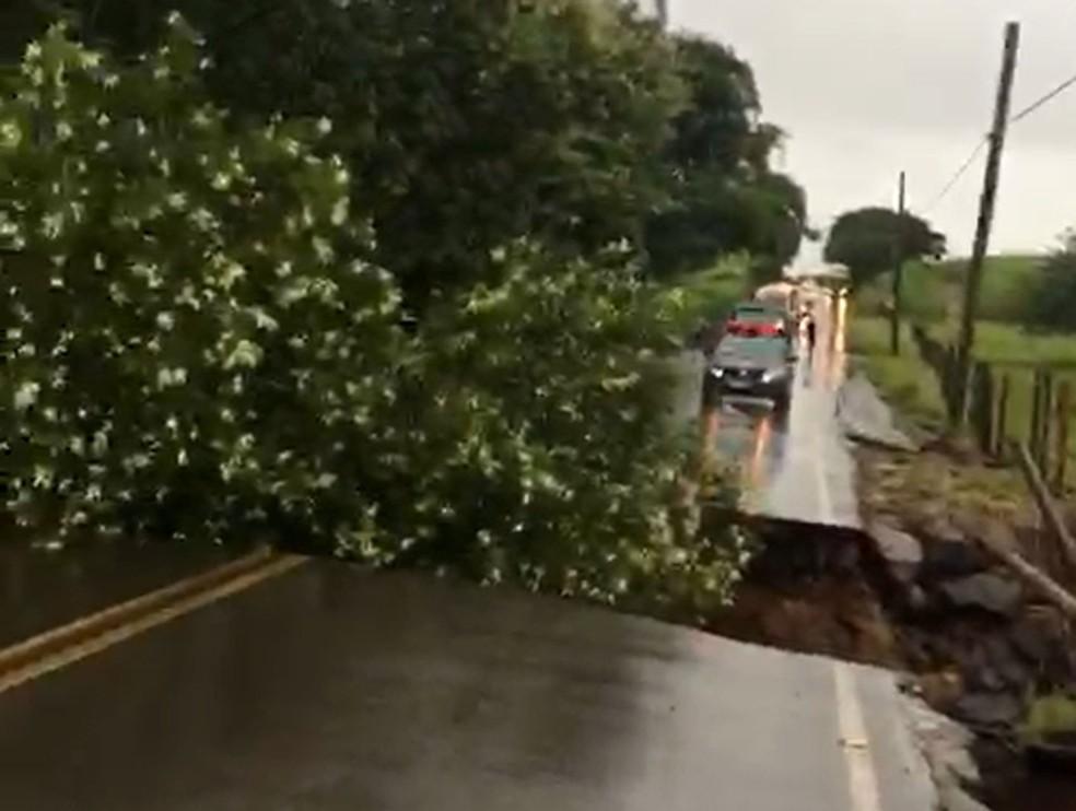 Ponte desaba com a força da água do rio em estrada de Mogi Guaçu. — Foto: Reprodução/EPTV