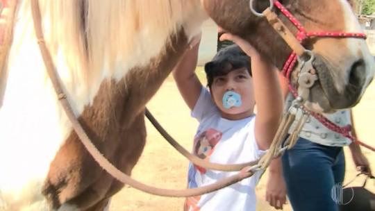 Projeto utiliza a equoterapia para atender crianças e adultos