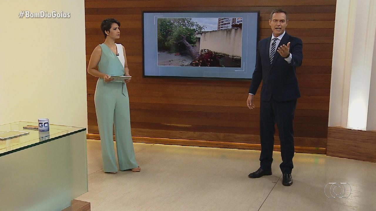 Veja o que é destaque no Bom Dia Goiás desta segunda-feira (11)