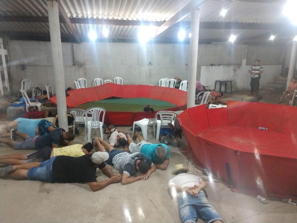 Ação da polícia flagrou rinha de galo em Macaíba, Grande Natal, na noite desta quinta (6). Ringues utilizados para as brigas foram vistos dentro da casa — Foto: Divulgação/Polícia Civil