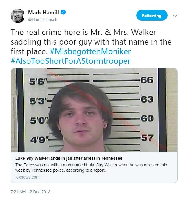 O tuíte de Mark Hamill lamentando a prisão de Luke Sky Walker e questionando a decisão de seus pais pelo nome dele (Foto: Twitter)