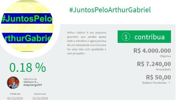 Vaquinha online já arrecadou mais de R$ 7 mil (Foto: Reprodução)