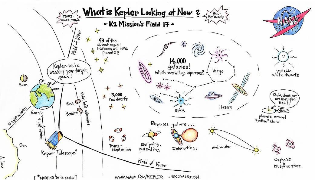 Para onde a Kepler está olhando agora.  (Foto: NASA)