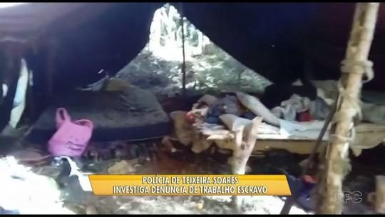 Polícia investiga suspeita de trabalho escravo em fazenda de erva-mate