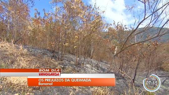Polícia Civil abre inquérito para investigar incêndio na Serra da Bocaina