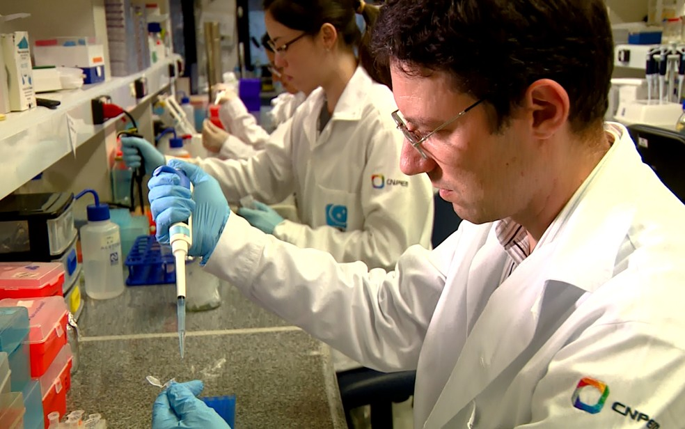 Pesquisadores do LNBio, em Campinas, trabalham no desenvolvimento da vacina contra o câncer de pele (Foto: Reprodução/EPTV)