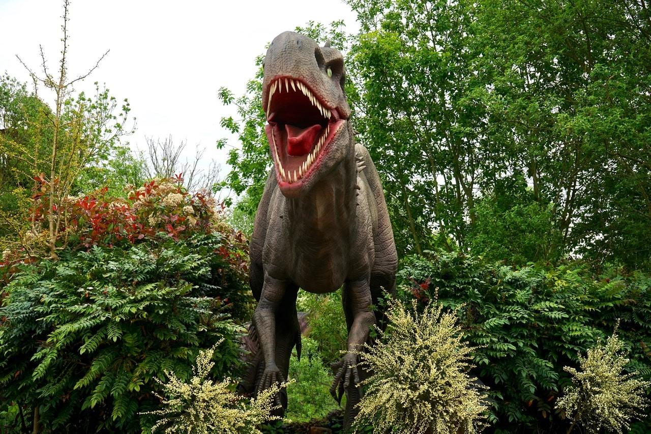 dinossauro (Foto: Pexels)