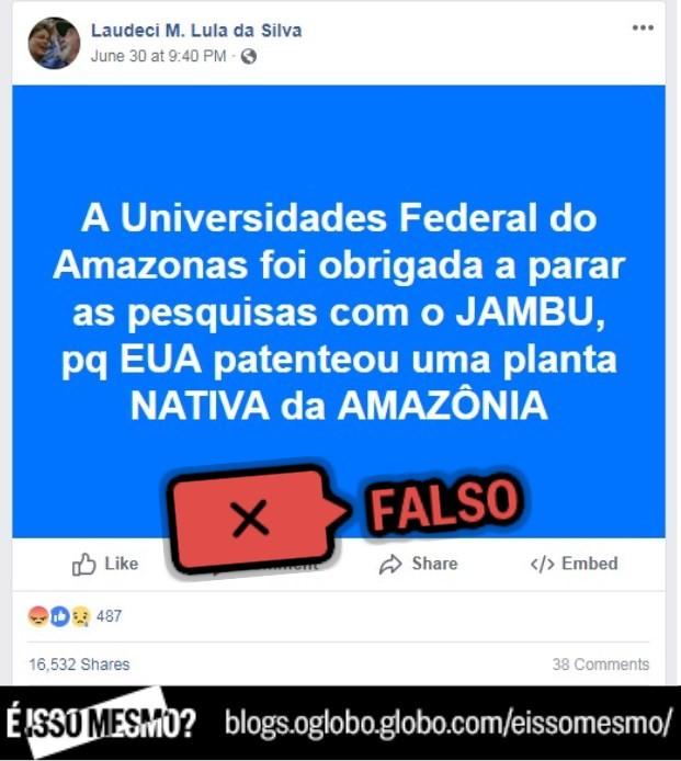 Publicação no Facebook diz que jambu foi patenteado pelo EUA