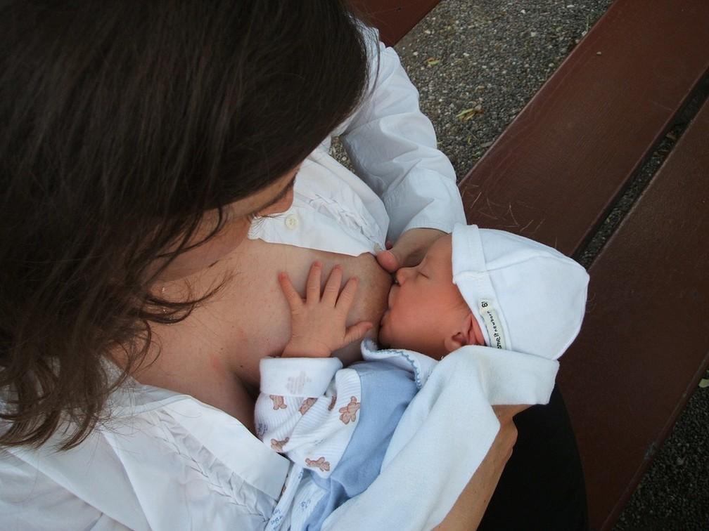 Segundo o estudo, a esttrutura do leite materno pode inclusive mudar quando percebe que o bebê está sob ameaça. Células também podem proteger a mãe da infecção  (Foto: Pixabay/Divulgação)