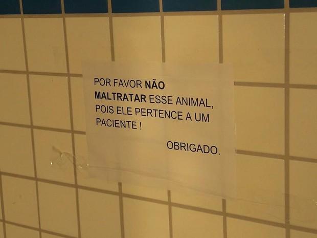 Cartaz colocado em hospital onde cão espera dono em Limeira (Foto: Reprodução Facebook/Alpa)
