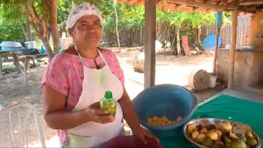 Produtos derivados do pequi viram fonte de renda para famílias no Piauí