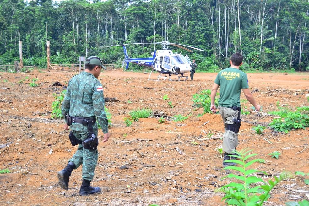 Operação de fiscalização do Ibama com a utilização de helicóptero na Terra Indígena Kaxarari, no Amazonas, em 2015. — Foto: Ditec_Ibama/AM