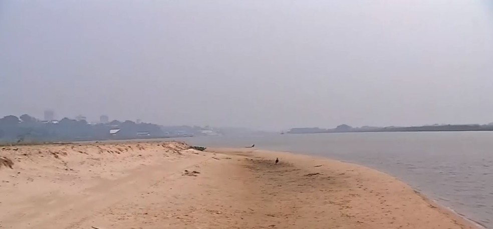 Banco de areia se formou no meio do leito do rio Paraguai, no Pantanal em MS, em 2020. Situação deve ser parecida em 2021. — Foto: Reprodução/TV Morena