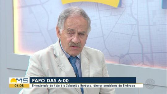 Diretor-presidente da Embrapa, Sebastião Barbosa, é o entrevistado do Papo das 6