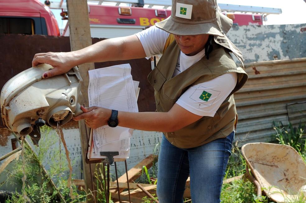 Agente descarta focos do mosquito da dengue no DF — Foto: Gabriel Jabur/Agência Brasília