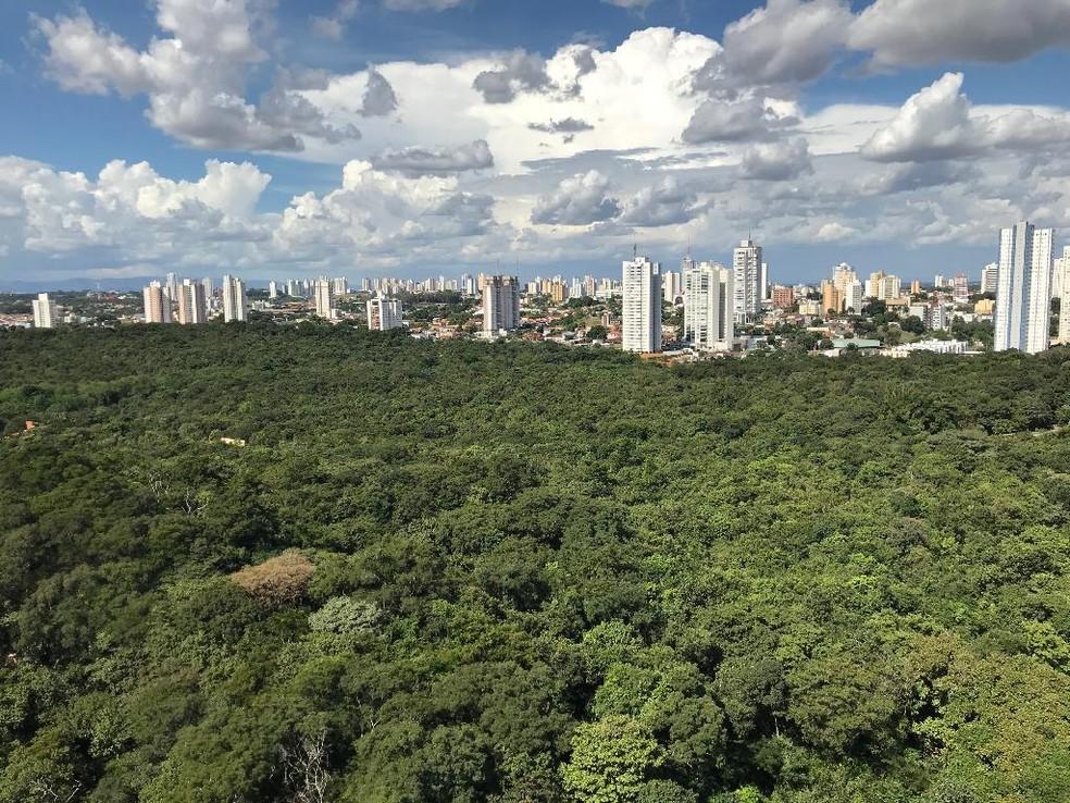 Vista aérea do Parque Mãe Bonifácia, em Cuiabá — Foto: Nara Assis/Secom-MT
