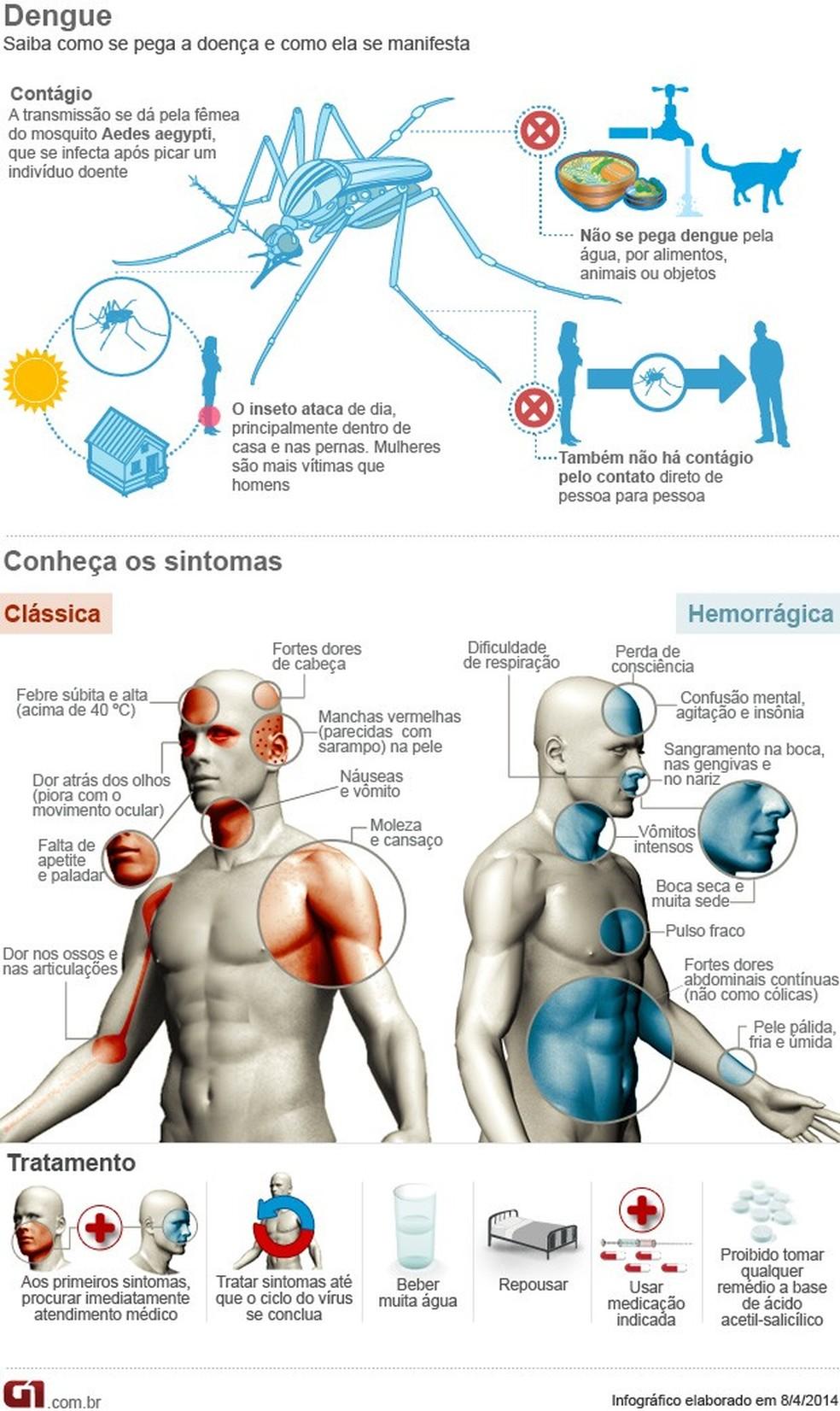 Infográfico detalha como a dengue age no corpo — Foto: G1