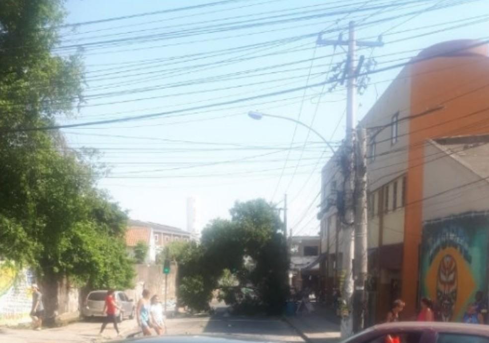 Queda de árvore interdita Rua Leopoldino de Oliveira, em Madureira, na Zona Norte do Rio. — Foto: Reprodução/Centro de Operações