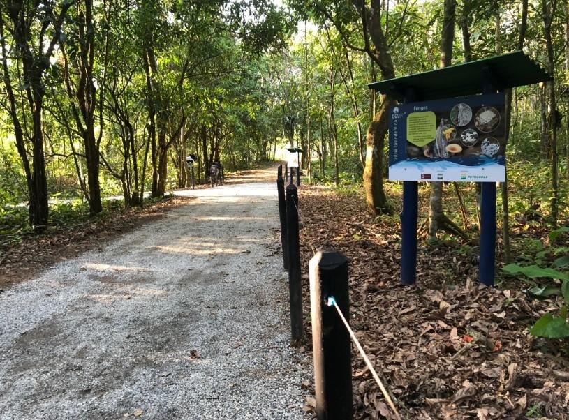 Reserva Ecológica de Guapiaçu