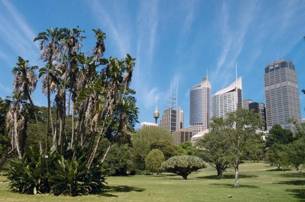 Viagem: o que há de melhor em Sydney (Foto: Sergio Pitamitz/ImageBroker/GlowImages)