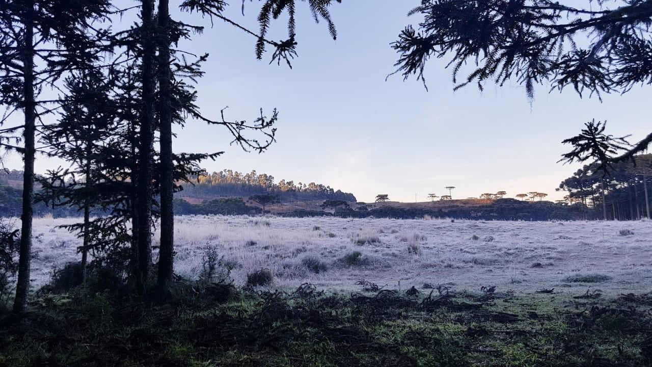 Último dia do outono amanhece com  geada e -4ºC na Serra catarinense