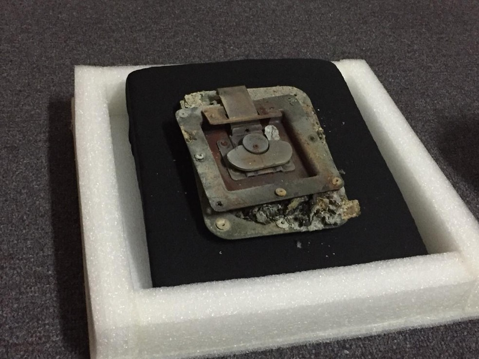 Pedaço da caixa onde estava originalmente o crânio atingido no incêndio — Foto: Patrícia Teixeira/G1