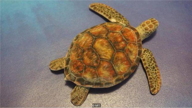 Fazer uma tartaruga parecer um rifle pode parecer benigno, mas pesquisadores temem consequências mais graves no mundo real  (Foto: MIT via BBC)