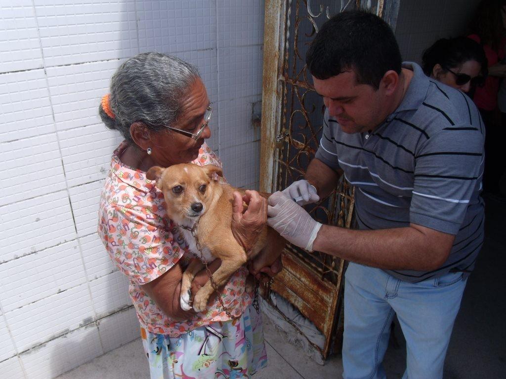 Campanha de vacinação antirrábica começa na próxima segunda em Maceió