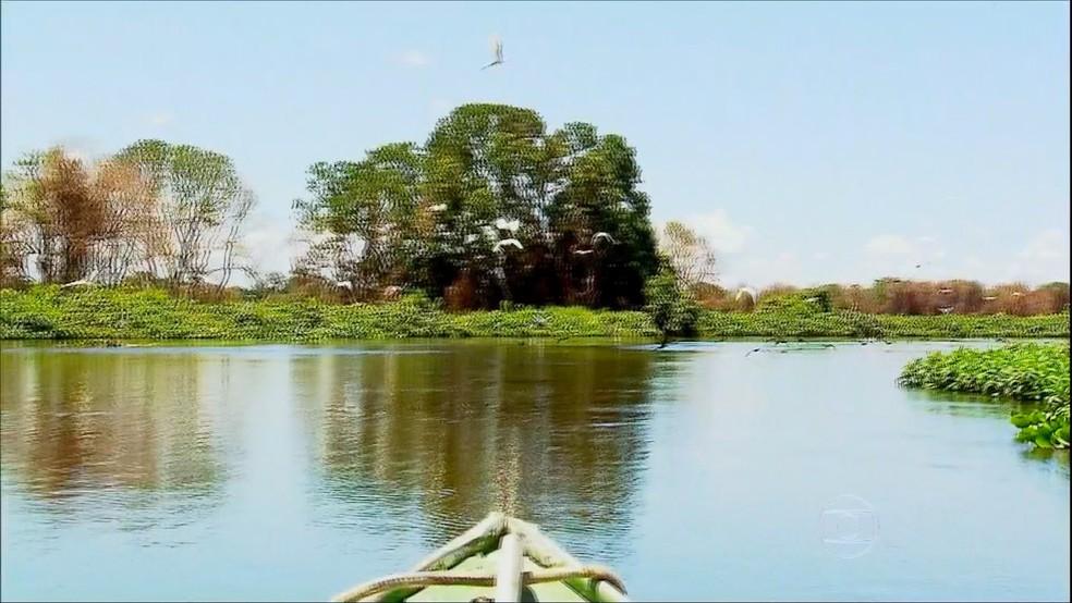 Expedicionários chegaram à região navegando pelo Rio Paraguai — Foto: Daniel Kantek/ Divulgação