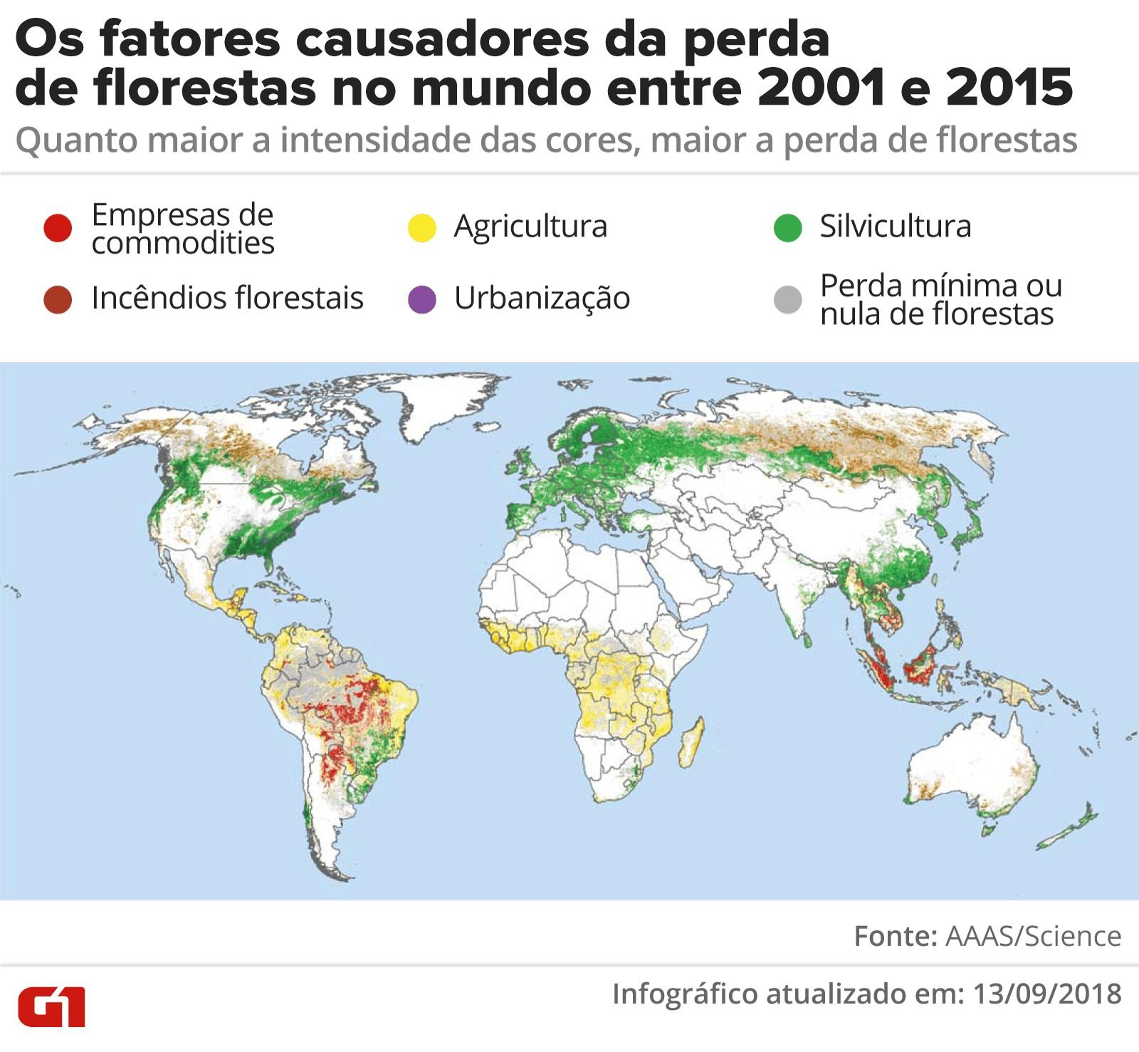 Empresas produtoras de matéria-prima são ligadas a 27% do desmatamento permanente no mundo, diz estudo