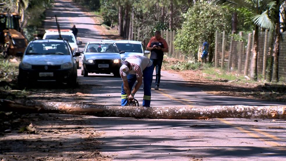 Homens trabalhavam durante o domingo para retirar árvores das estradas — Foto: Reprodução/TV Gazeta